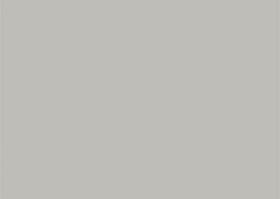 Vienna Grey Slate